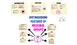 Distinguishing Features of Microbial groups