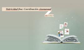 Copy of Motricidad fina: Coordinación visomanual