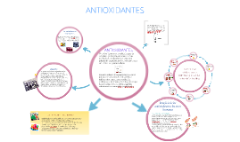 Copy of antioxidantes