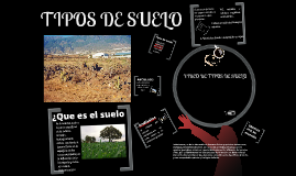 Copy of Copy of tipos de suelo