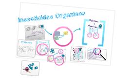 Insecticidas Orgánicos