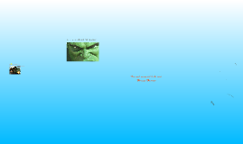 Hulk Proyect