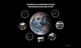 Copy of AUTORREGULACIÓN FONOAUDIOLOGIA SAN FELIPE