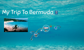 My Trip To Bermuda