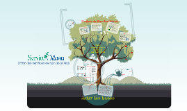 SO Tree_ French
