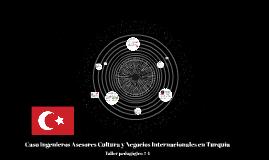Copy of Caso Ingenieros Asesores Cultura y Negocios Internacionales