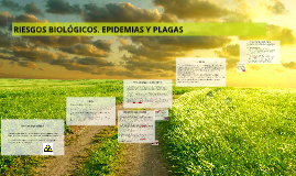 RIESGOS BIOLÓGICOS. EPIDEMIAS Y PLAGAS