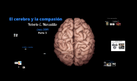 Copy of Copy of El cerebro y la compasión