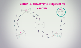 Lesson 3; Homestatic responses to exercise