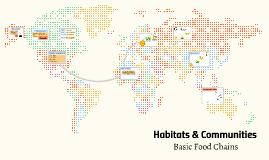 Basic Food Chains