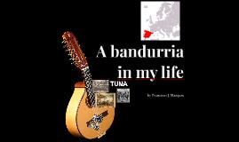 A bandurria in my life