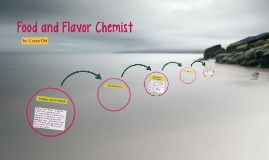 Food and Flavor Chemist