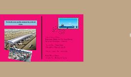 Copy of Portales de acceso, puertos, aereopuertos y cruces fronteriz