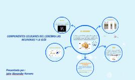 COMPONENTES CELULARES DEL CEREBRO: LAS NEURONAS Y LA GLÍA