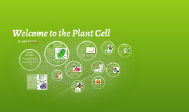 Welcome  to the Plant Cell