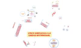 CINCO AMENAZAS A LA UNIDAD MATRIMONIAL