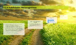 2.2.4 Habilidades Metacognitivas