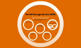 NSS File System OS Case Study