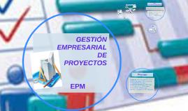GESTIÓN EMPRESARIAL DE PROYECTOS EPM