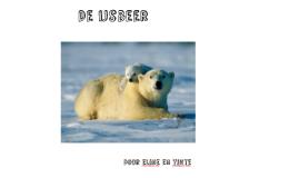 De ijsbeer