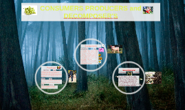 CONSUMERS PRODUCERS and DECOMPOSERS