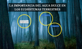 LA IMPORTANCIA DEL AGUA DULCE EN LOS ECOSISTEMAS TERRESTRES