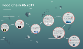 Food Chain #6 2017