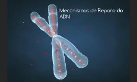 Copy of Mecanismos de Reparo do ADN