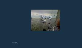 Sailing on Rumours