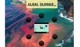 Algal Blooms...