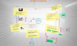 Copy of Seleccion de la Muestra