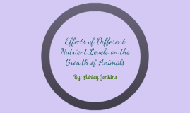 Effects of Different Nutrient Levels on the Growth of Animal