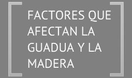 Factores q afectan la madera y la guadu