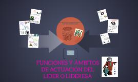 FUNCIONES Y ÁMBITOS DE ACTUACIÓN DEL LIDER O LIDERESA
