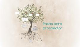 Pasos para prospectar