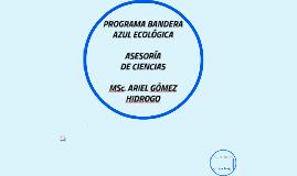 Copy of PROGRAMA BANDERA AZUL