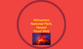 Volcanoes National Park, Hawaii Food Web