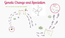 Copy of Genetic Change and Speciation