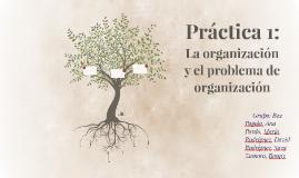 Práctica 1: La organización y el problema de organización