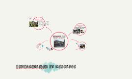 Copy of CONTAMINACION EN LOS MERCADOS DE ABASTOS