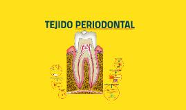 TEJIDO PERIODONTAL