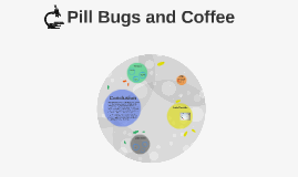 Pill Bugs and Coffee