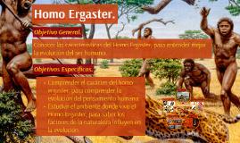 Homo Ergaster.