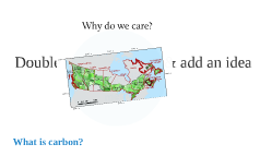 Land-based Carbon Sinks and Sources
