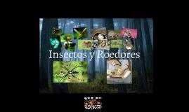 Insectos y Roedores