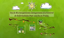 Uso de Microorganismos Antagonistas en el Control de Enfermedades en Frutos