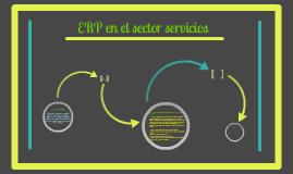 ERP en el sector servicios