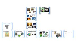 Copy of Copy of Seminário 2 - Conceito de ambiente