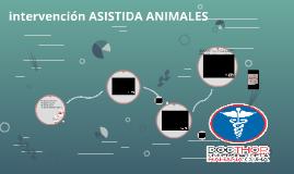 INTERVENCION ASISTIDA ANIMALES