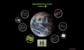 Copy of Microbial Fuel Cells